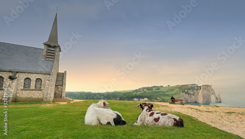 Poster de jardin Vache etretat