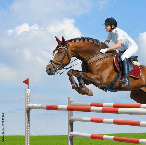 Cuadros en Lienzo Equestrian jumper - horsewoman and bay mare
