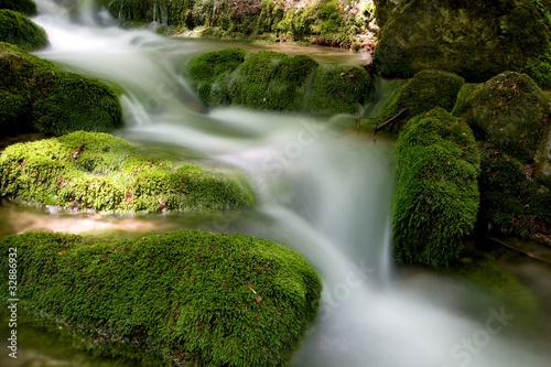Foto auf Gartenposter Forest river mountain stream