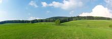 Panorama Of Green Madows