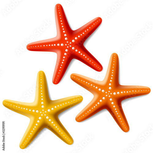 Carta da parati Three starfishes on white
