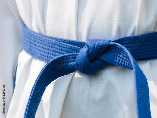 Garden Poster Martial arts TaeKwonDo