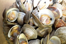 Plate Of Whole Steamers Cooked