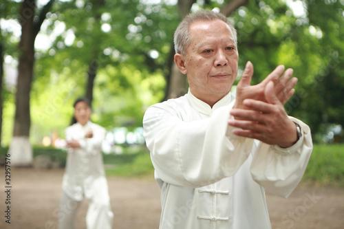 Garden Poster Martial arts chinese do taichi outside