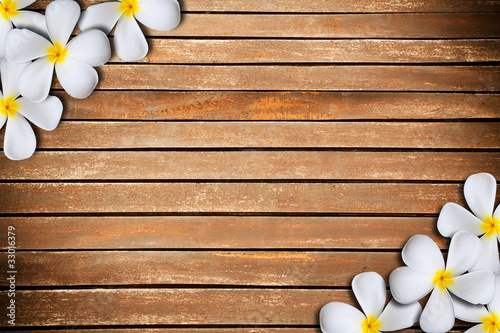 Foto auf AluDibond Plumeria White plumeria flower on Wood Pattern