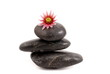 black stones with flowers