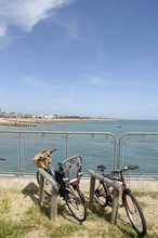 Bicycles By The Sea At Littlehampton, Sussex