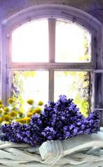 Fototapeta Do pokoju Lavendel