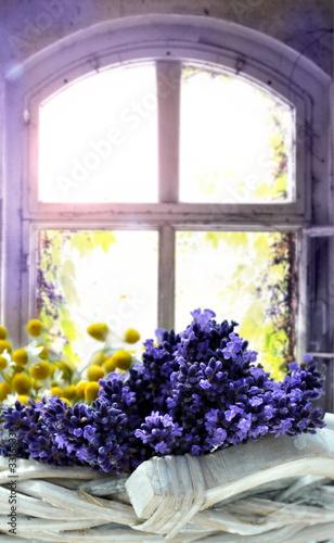 Lavendel - 33168336