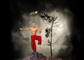 Fototapeta Sport Martial Arts Kung Fu Background
