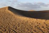 Fototapeta Natura - Sanddünen von Maspalomas auf den kanarischen Inseln von Spanien