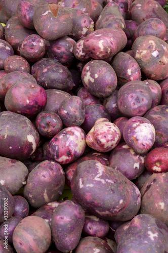 Fototapeta Red potatoes on display obraz na płótnie