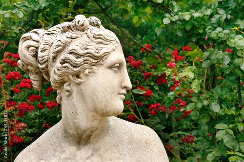 Foto  Kopf einer Venusstatue im Profil