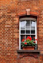 Generium Window Box In Brick Wall