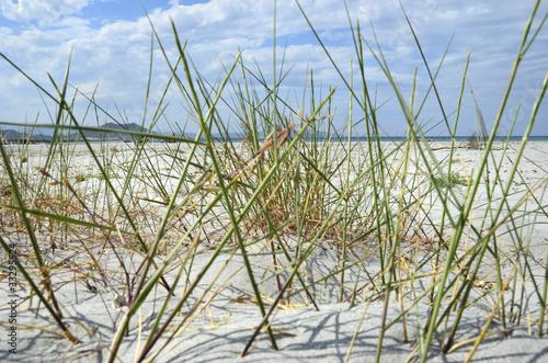 Spoed Foto op Canvas Noordzee sardinien