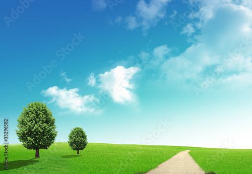 Staande foto Heuvel Two trees