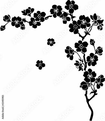 czarno-biala-grafika-z-kwiatami-wisni