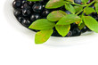 Bilberries on white dish