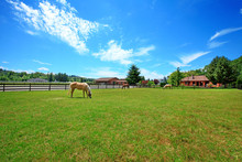 Pasture On A Horse Ranch With A House And Fence.