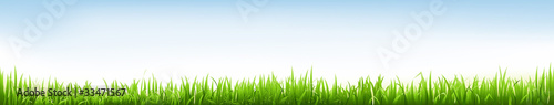 Fototapeta Header With Grass obraz