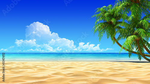 Palms on empty idyllic tropical sand beach