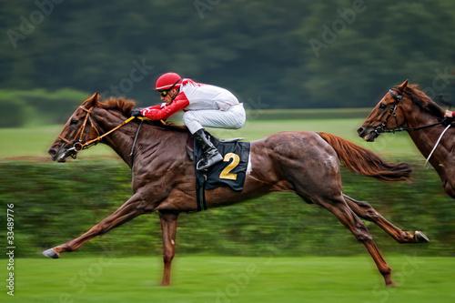 Foto auf AluDibond Pferde Rennpferd