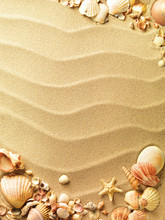 Sea Shells With Sand As Backgr...