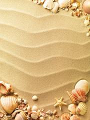 Fototapeta sea shells with sand as background