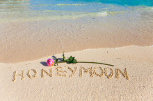"On Sand An Inscription ""Honeymoon"" And A Blossoming Rose.."