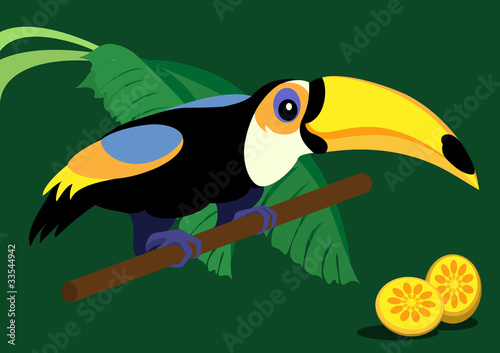 Poster Oiseaux, Abeilles Funny cartoon toucan on green background