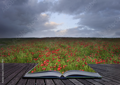 Keuken foto achterwand Khaki Creative concept idea of poppy field landscape coming out of pag