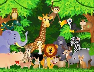 Fototapeta animal cartoon