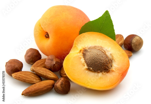 apricot with nuts Canvas Print