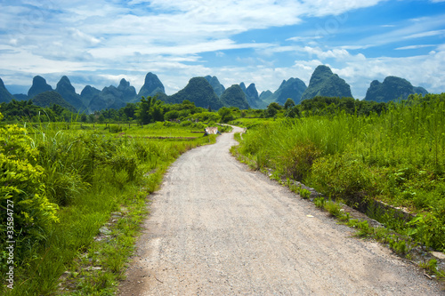 Road to nature (karst landscape in China)