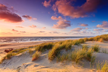 Seaside With Sand Dunes At Sun...