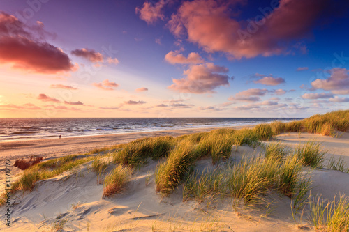 Seaside with sand dunes at sunset Canvas