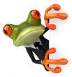Leinwandbild Motiv Business frog