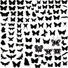 Butterflies Silhouettes Design...