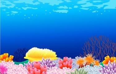Fototapeta na wymiar beautiful corals background