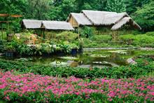 Suzhou - Jardin De La Politique Des Simples 02