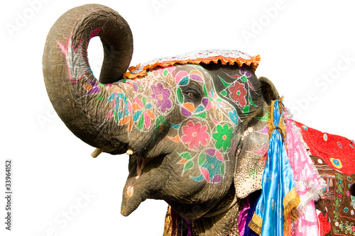 Spoed Foto op Canvas India hand painted elephant profile, Jaipur, Rajasthan,India
