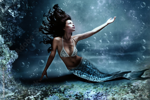 Photo Stands Mermaid mermaid