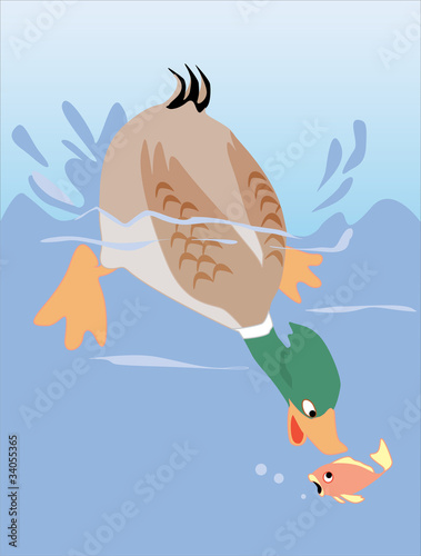 Poster Rivier, meer Duck catching fish