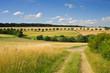 canvas print picture - Landschaft im Taunus im Sommer