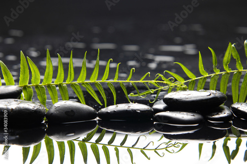 Fotografie, Obraz  peace and tranquility, pebbles and fern leaf reflected