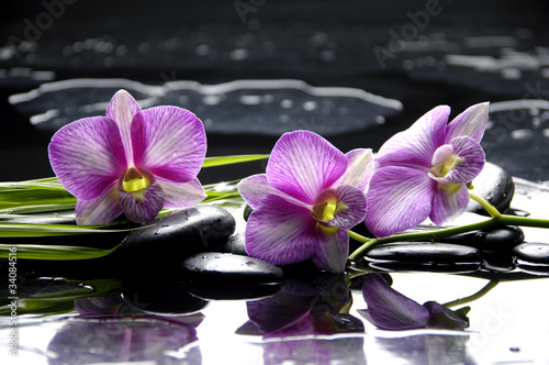 Foto auf Gartenposter Spa Pink orchid with bamboo leaf and stones with reflection