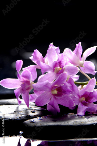 Poster Spa Bunch of purple orchid and black stones with reflection