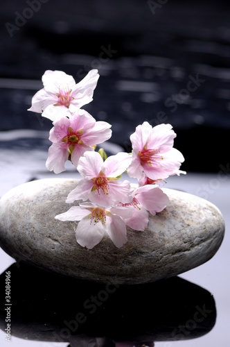 therapy stones with cherry flowers reflection