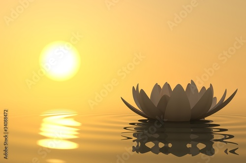 Zen flower lotus on sunset - 34088472