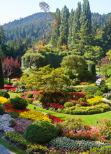 Butchart Gardens, Vancouver Is...